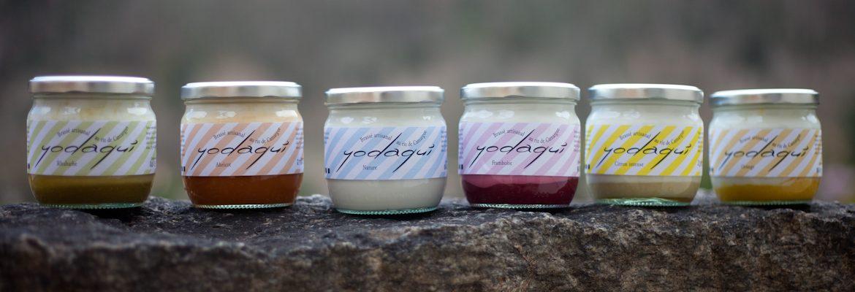 variétés dessert végétal yodaqui